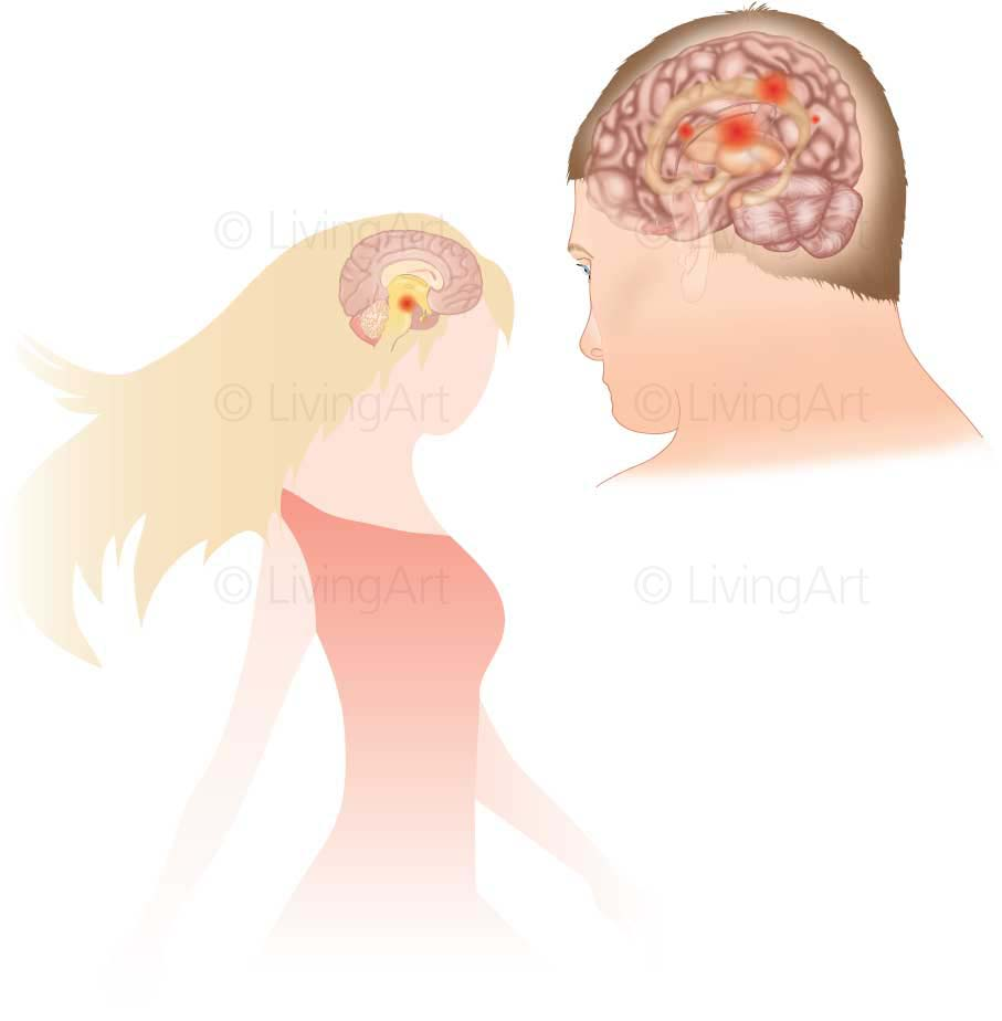 NEW-MRI-Anger-and-Desire