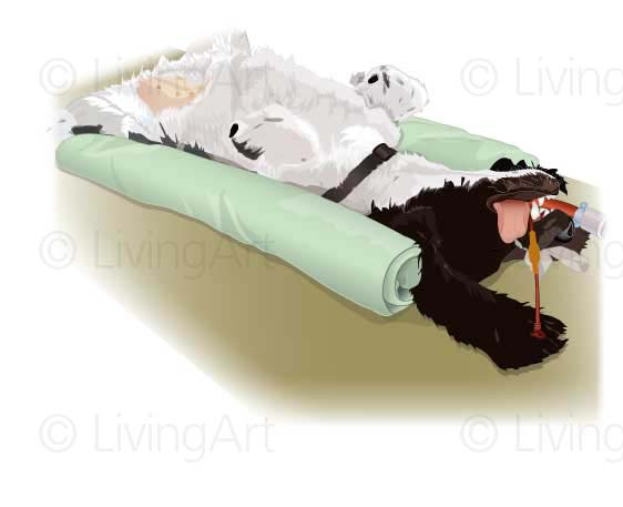 NEW-Recumbancy